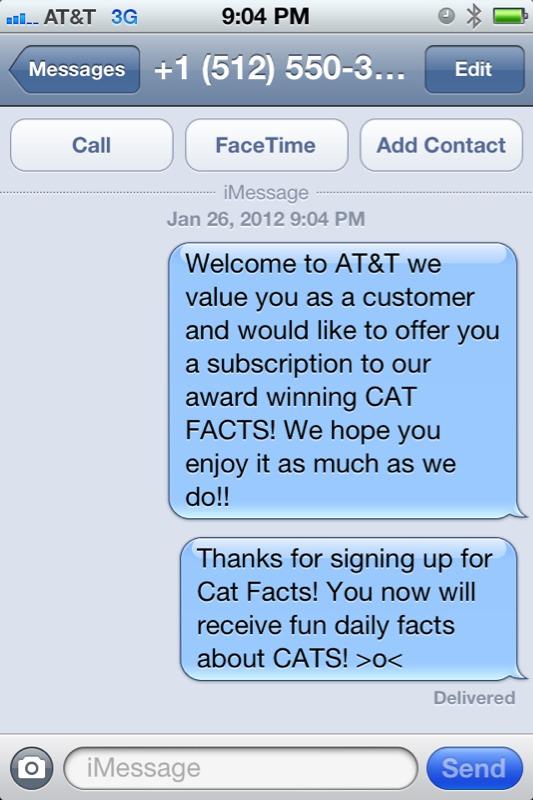 cat facts prank text sign up cat hd wallpaper utsprokids org